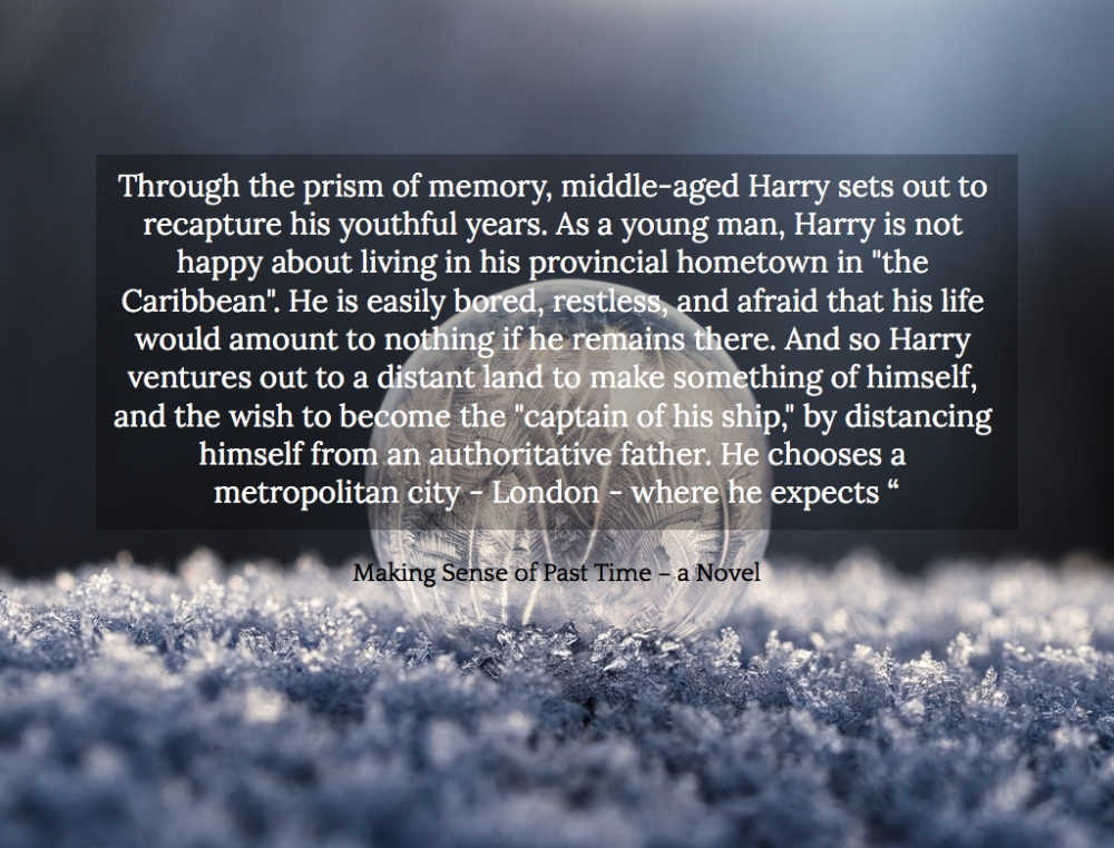 1548845908668-through-the-prism-of-memory-middle-aged-harry-sets-out-to-recapture-his-youthful-years.jpg